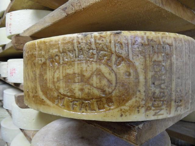 formaggio monte faldo (2)